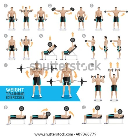Dumbbell Exercises Workouts WEIGHT TRAINING Vector Stock