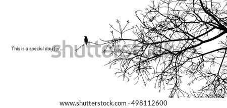 Bird Silhouette Stock Photos, Royalty-Free Images