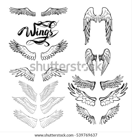 Wing Stock Images, Royalty-Free Images & Vectors