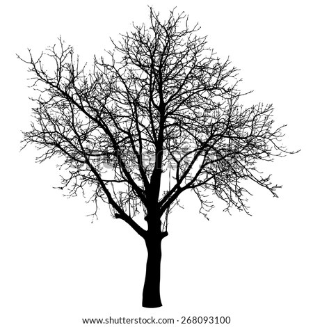 Plant Silhouette Stock Images, Royalty-Free Images