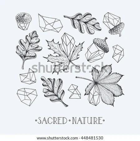Hipster Geometrical Leaves Set Isolated Symbols Stock