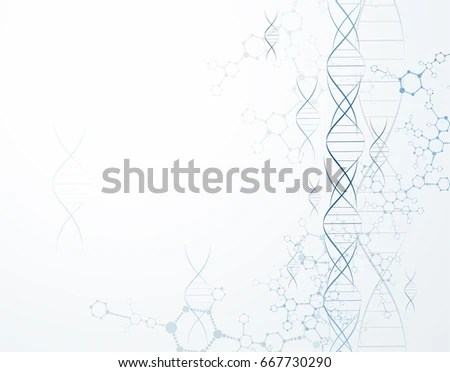 Dna Replication Stock Images, Royalty-Free Images