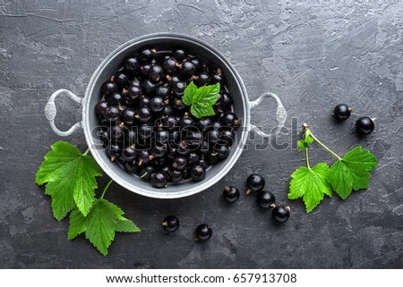 Falling Leaves Wallpaper Blackberry Blackcurrant Stock Images Royalty Free Images Amp Vectors