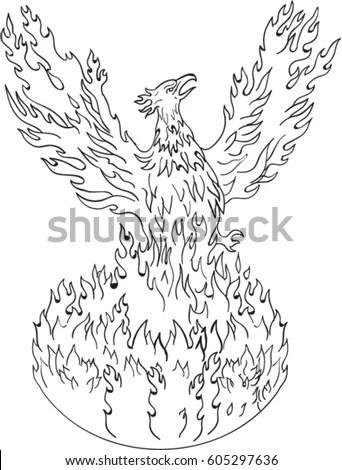 Drawing Sketch Style Illustration Phoenix Rising Stock