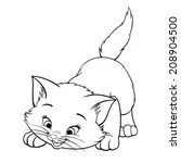 Vector kitten playing cartoon cute happy white cat smiling
