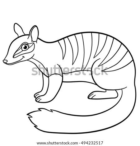 Illustration Cute Cartoon Armadillo Eps 10 Stock Vector