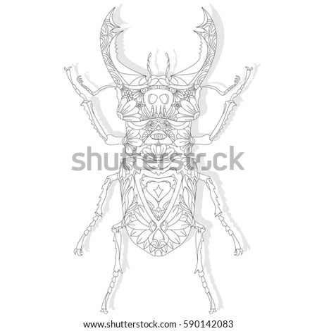 Vector Illustration Isolated Bear Skull Front Stock Vector