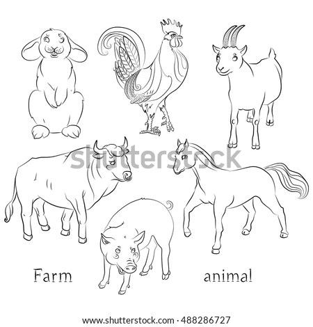 Various Dog Breeds Line Drawing Vector Stock Vector
