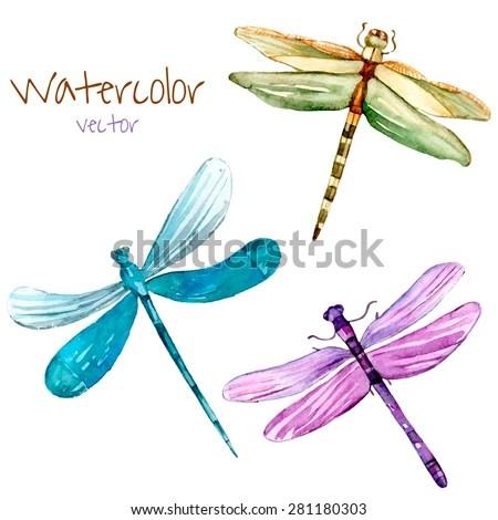watercolor dragonfly set vector