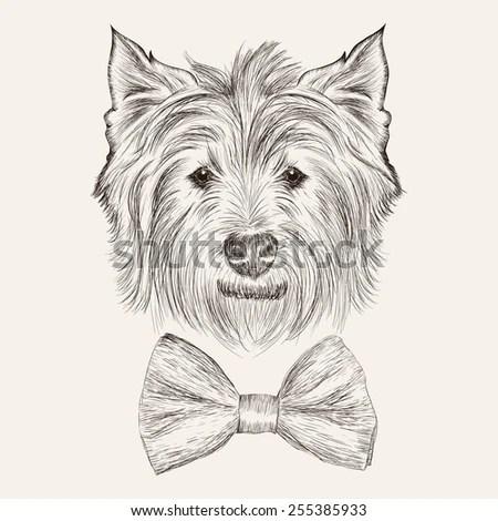 Portrait Dog On Black Background Hand Stock Vector