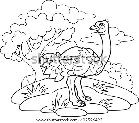 Cartoon Wild Birds Kids Eagle Cute Stock Vector 436511293