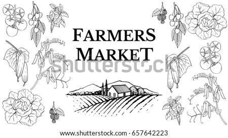 Fresh Bread Basket Ears Wheat Graphic Stock Vector