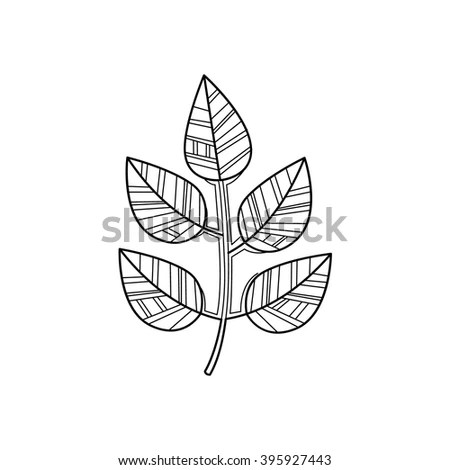 Doodle Textured Maple Leaf Stock Vector 112980721