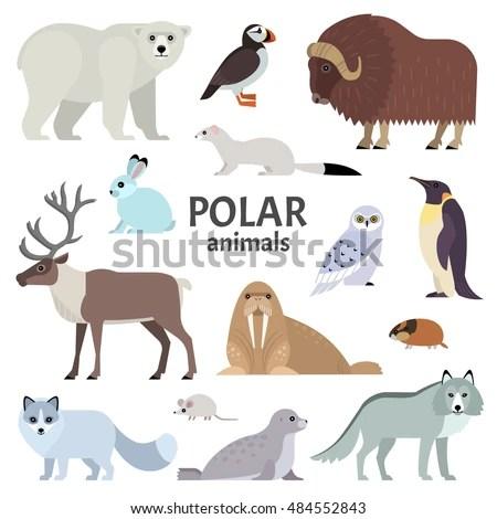 Set Handdrawn Arctic Animals On Cold Stock Vector
