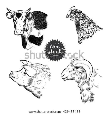 Farm Animals Vintage Set Vector See Stock Vector 390925060