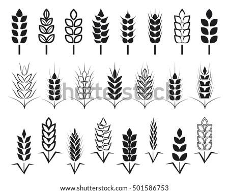 Wheat Ear Symbols Logo Design Agriculture Stock Vector