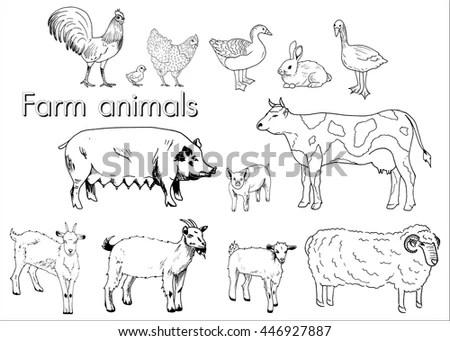 Farm Animals Set Vector Sketches On Stock Vector 190708094