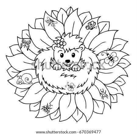 Hedgehog Doodleblack White Drawing Coloring Vector Stock