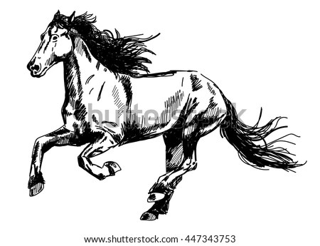 Cartoon Pictures Bucking Horse. Engine. Wiring Diagram Images