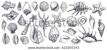 Ocean Sea Beach Waves Sketch Black Stock Vector 470596688