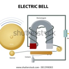 How Does An Electric Bell Work Diagram Parts Of A Butterfly Designua's