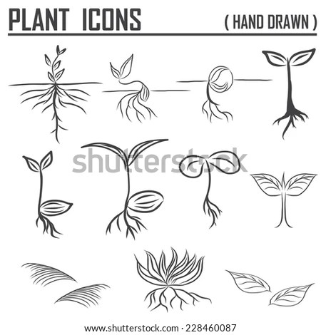 Hand Draw Sprouts Plants Seeding Stock Vector 120200473