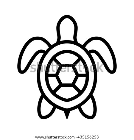 Sea Turtle Drawing Top View
