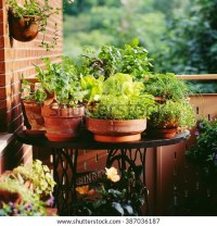 Balcony Stock Photos, Images, & Pictures | Shutterstock