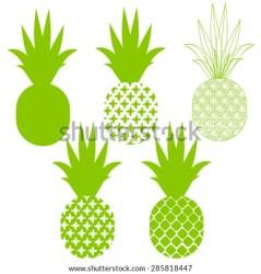 pineapple vector silhouettes shutterstock cartoon