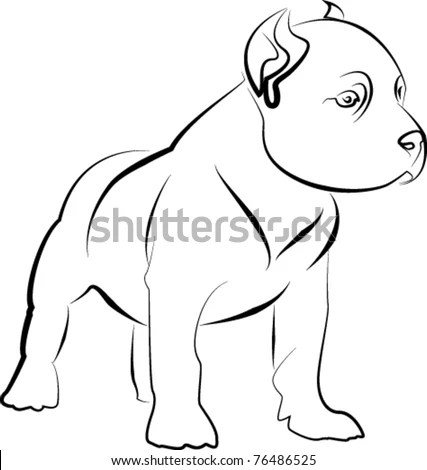 American bully canine Stock Photos, Images, & Pictures