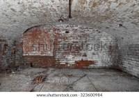 Old Abandoned Cellar Brick Walls Vaulted Stock Photo ...