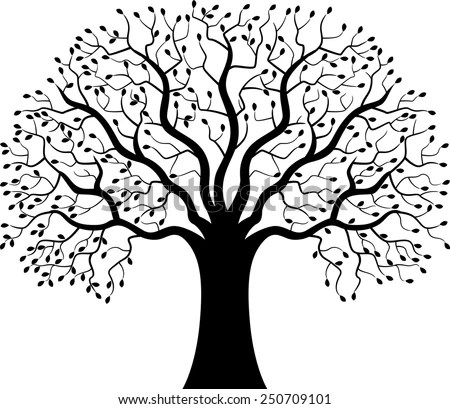 Tree Of Life Vector Stock Photos, Images, & Pictures