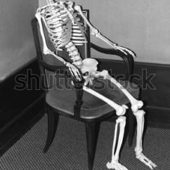 Bird Nest Chair Velvet Lounge Sitting Skeleton Stock Images, Royalty-free Images & Vectors   Shutterstock