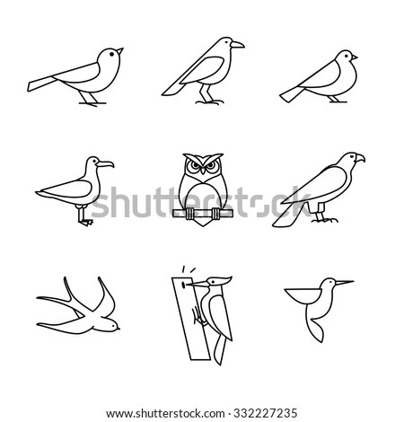 Songbird Stock Photos, Royalty-Free Images & Vectors