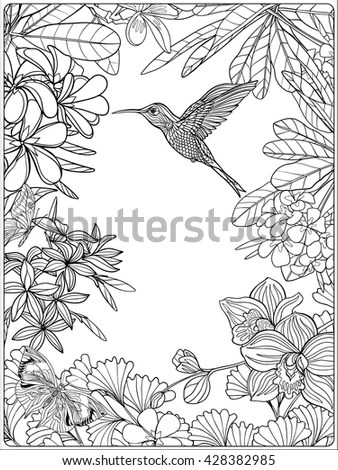 Vintage Drawing Alder Leafs Seeds Picture Stock Photo