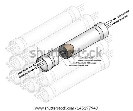 Osmosis Stock Photos, Royalty-Free Images & Vectors