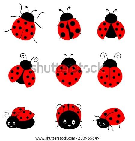 ladybug stock royalty-free