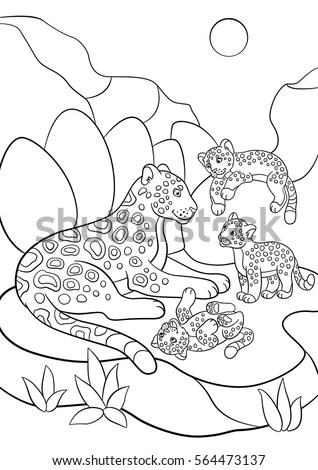 Coloring Pages Mother Jaguar Her Little Stock Vector