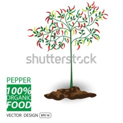 Diagram Of The Life Cycle Strawberry Battery Switch Wiring Parts Treeclipart Tree Structure Trunk Root Stock Vector 252114028 - Shutterstock