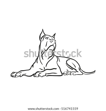 Pitbull Stock Images, Royalty-Free Images & Vectors