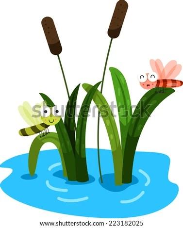 pond reeds stock