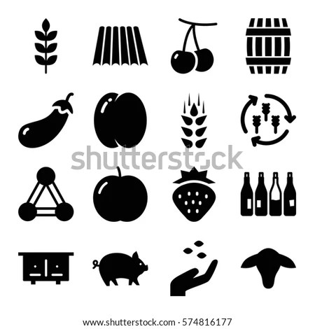 Set 16 Agriculture Filled Icons Such Stock Vector