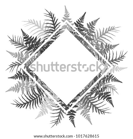 Equatorial Forest Stock Images, Royalty-Free Images