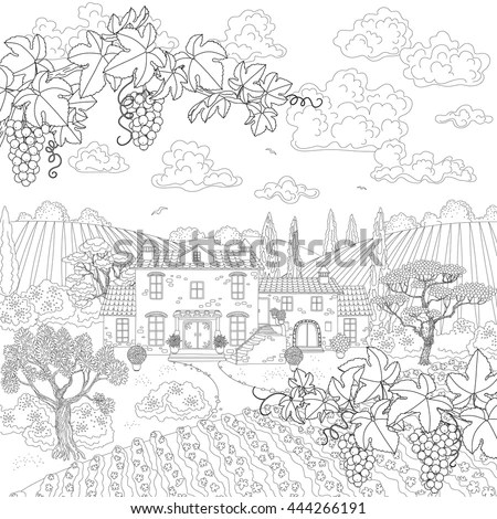 Cartoon Vineyard Stock Images, Royalty-Free Images