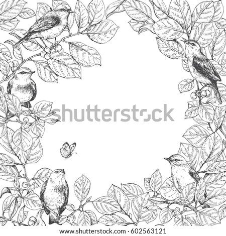 Songbird And Berries Stock Images, Royalty-Free Images