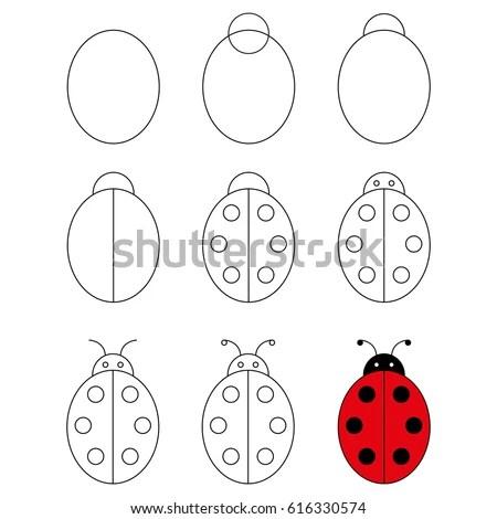 Step By Step Drawing Tutorial Ladybug Stock Vector