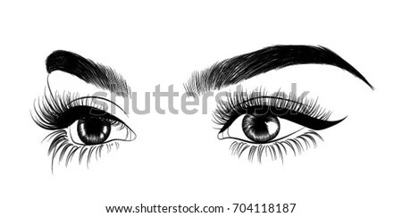 Handdrawn Womans Eye Perfectly Shaped Eyebrows Stock