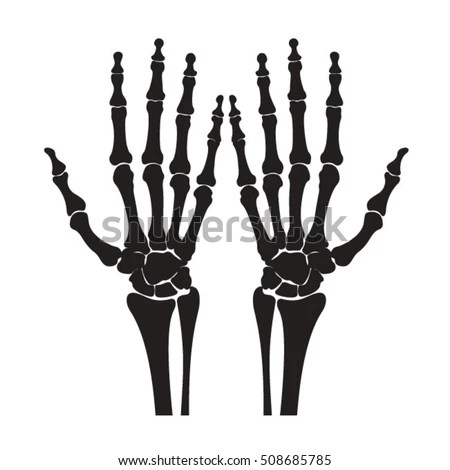 Skeleton Hand Stock Images, Royalty-Free Images & Vectors