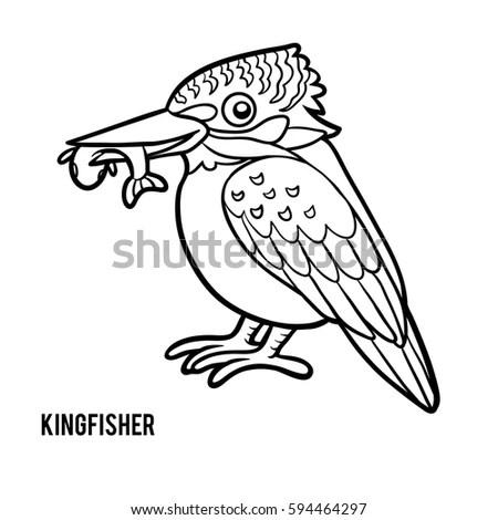 Coloring Book Children Kingfisher Stock Vector 594464297