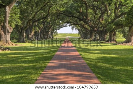 tree branch rocking chair round microfiber southern plantation stock photos, images, & pictures   shutterstock
